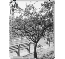 Riverside in B&W  iPad Case/Skin