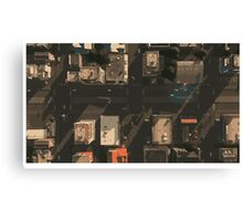 Bird Eye View Canvas Print