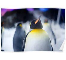 Penguin 2 Poster