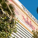 The Mirage! by Casey VanDehy