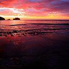 tessellated sunrise, eaglehawk neck. tasmania. by tim buckley | bodhiimages