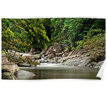 Up The Creek - Mossman Gorge Poster
