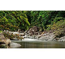 Up The Creek - Mossman Gorge Photographic Print