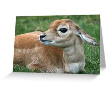 Mum, Where are You? Greeting Card