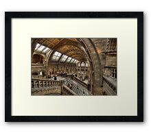 The Natural History Museum - London Framed Print