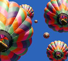 Hot Air Balloons Panoramic by Edward Fielding