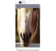 Miniature Donkey  iPhone Case/Skin