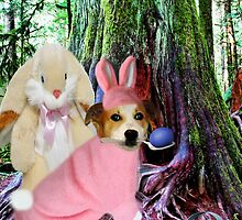 ❀◕‿◕❀I AM THE EASTER BUNNY,,NOW WHO IS THE IMPOSTOR?❀◕‿◕❀ by ╰⊰✿ℒᵒᶹᵉ Bonita✿⊱╮ Lalonde✿⊱╮