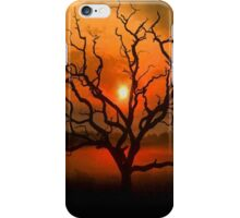 Beautiful Sunset Case iPhone Case/Skin
