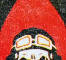 Israeli Air Force Winged Skull Sticker