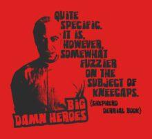 Big Damn Heroes: Book by Charles Flanagan