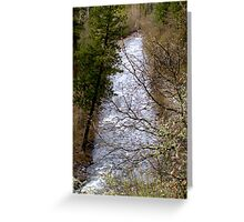 River Through Trees Greeting Card