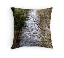 River Through Trees Throw Pillow