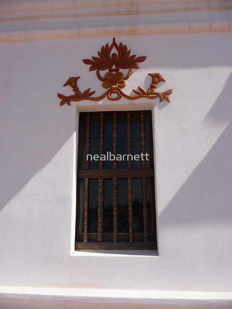 Plain window, fancy decoration by nealbarnett