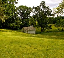Valley Forge House by K. Abraham