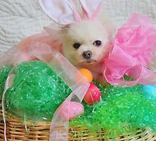 Happy Easter 2013 (Lola) by mauli
