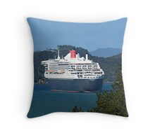 Even the Queen shows her stern to the public..........! Throw Pillow