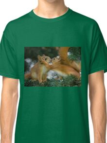Baby Squirrel Kiss Classic T-Shirt