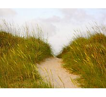 Sandy Path Photographic Print