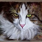 NORWEGIAN FOREST CAT Series #1  by Magaly Burton