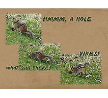 Curious Chipmunk Gets A Surprise Photographic Print
