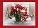 Red Cyclamen 2 by MotherNature