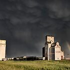 Prairie Grain Elevator in Saskatchewan Canada with storm clouds by pictureguy