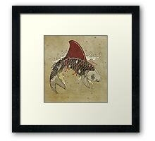 koi shark fin 03 Framed Print