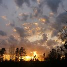 Golden Sunset by Vivian Eagleson