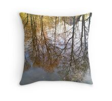 Water World Throw Pillow