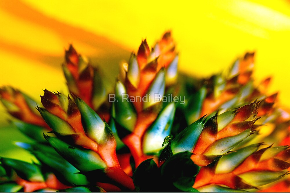 Green and orange flames whipping at the sky by ♥⊱ B. Randi Bailey