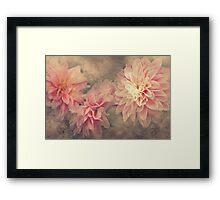 """""""Autumn Dahlia's"""" Framed Print"""