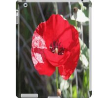Vector Style Poppy With Natural Background  iPad Case/Skin