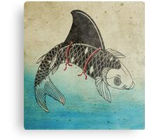 Koi Shark Fin Metal Print