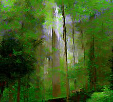 Light in the Forest by Lisa Taylor
