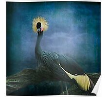 The Crowned Crane Poster