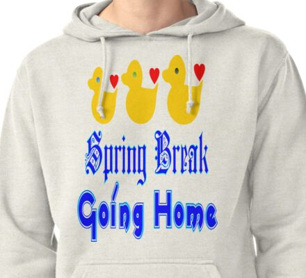 ㋡♥♫Spring Break-Going Home Ducks Clothing & Stickers♪♥㋡ Pullover Hoodie