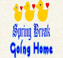 ㋡♥♫Spring Break-Going Home Ducks Clothing & Stickers♪♥㋡ Hoodie