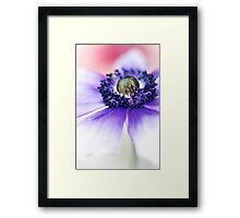 Flower Power flower.... Framed Print