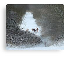 Dogs in Country Snow Scene Metal Print