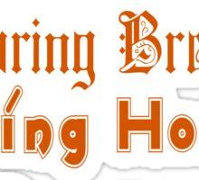 ㋡♥♫Spring Break-Going Home Ducks Clothing & Stickers♪♥㋡ Sticker