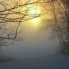 Fog Bound Sunset I by Kathleen M. Daley