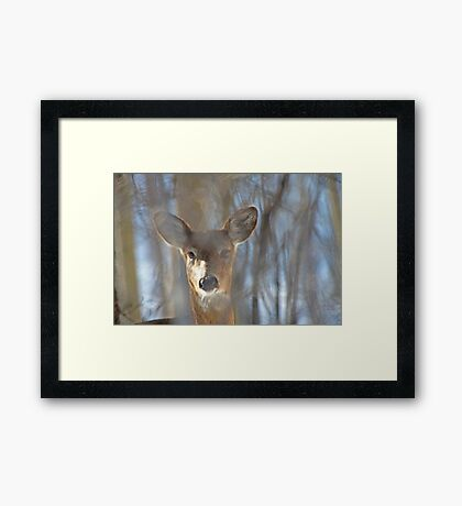 They Call Me Number 5 Framed Print