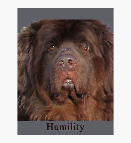 Humility Photographic Print