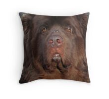 Humility Throw Pillow