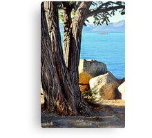 """Tree Designs"" Metal Print"