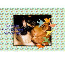 When Kittens Dream. . . Photographic Print