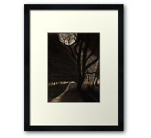 Singing branches Framed Print