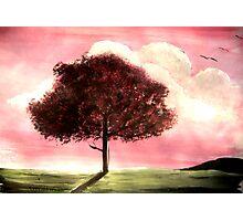'Cherry Tree' Photographic Print