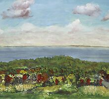 Lake Erie Overlook by drewkrispies
